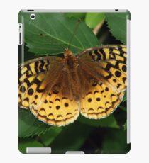Orange and Green iPad Case/Skin