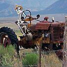 Overworked Farmer by CarolM