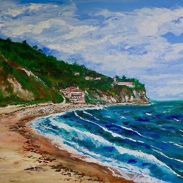 Burnout Beach, Palos Verdes Pennisula by donnaroderick