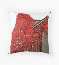 """AUTUMN COLOURS"" Throw Pillow"