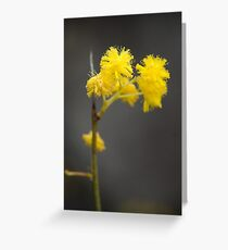 Dash of Yellow Greeting Card