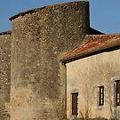 Château-Larcher by Pamela Jayne Smith