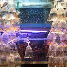 fish market hongkong by onijiji