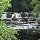 aysgarth falls in september by nightjar