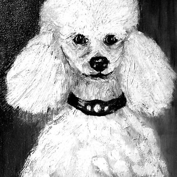 Poodle called Charlie  by ginnymac