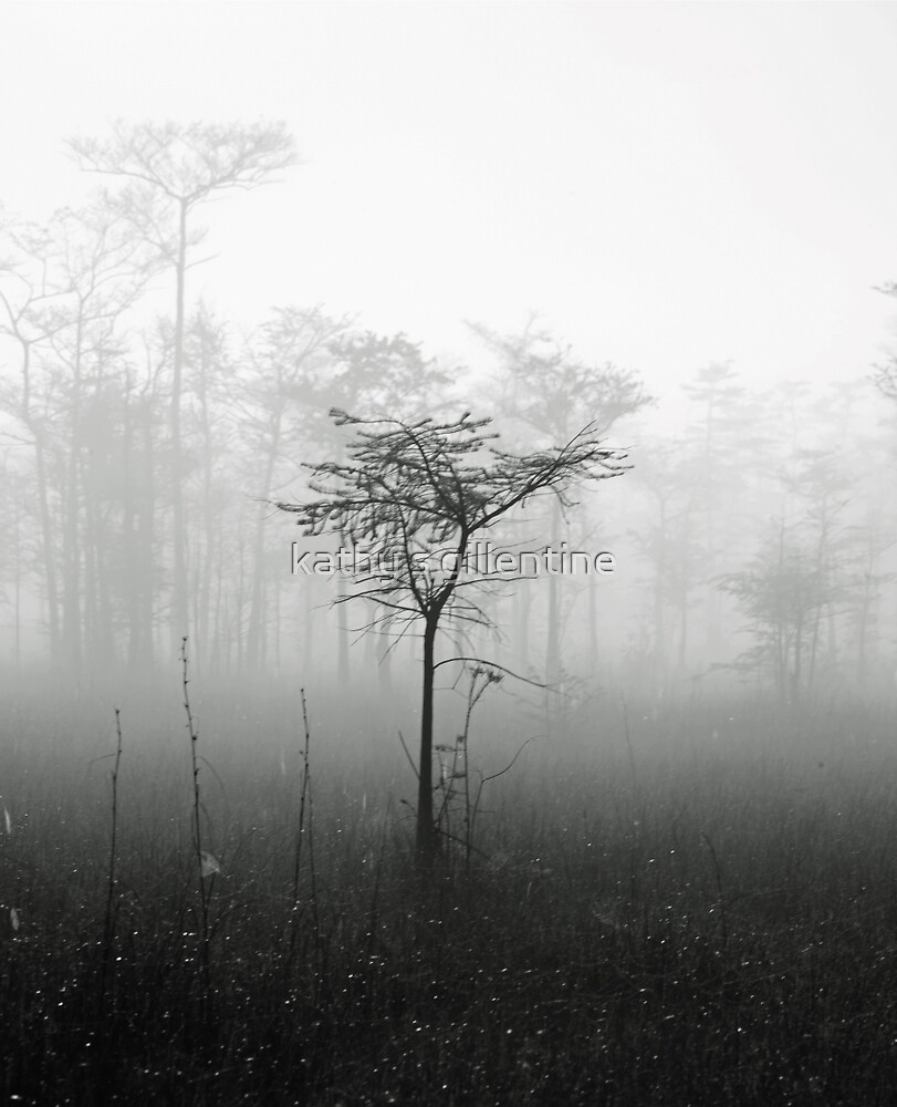alone in the mist by kathy s gillentine