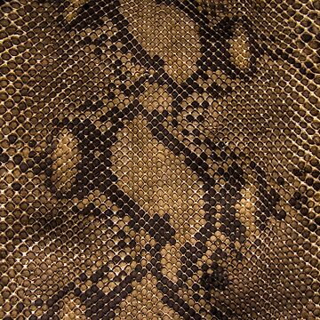 SNAKESKIN by IMPACTEES