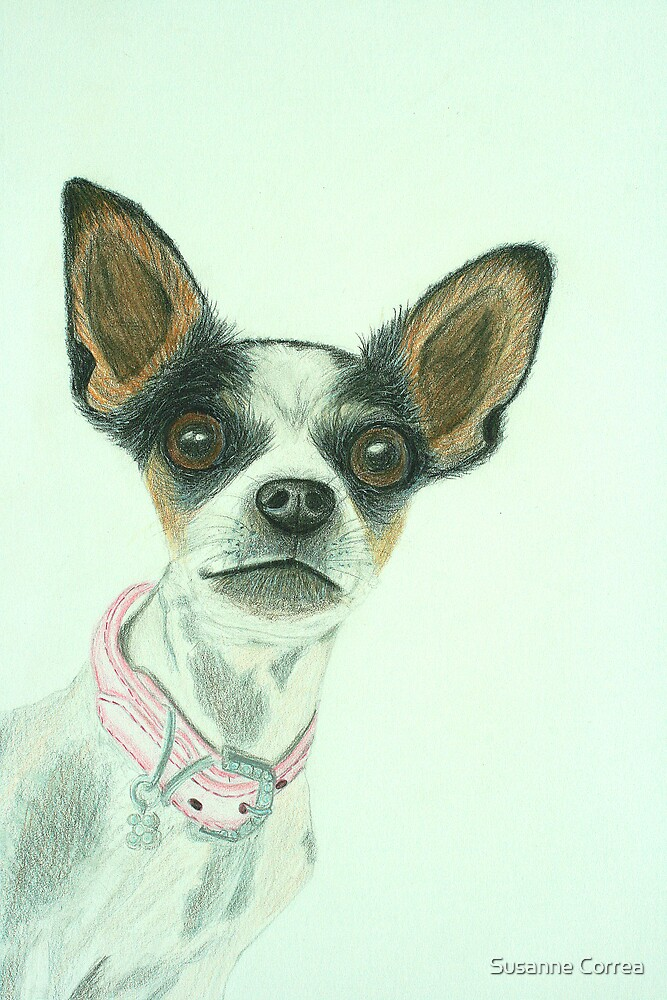 Lily Drawn by Susanne Correa