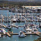 Coffs Harbour Marina by myraj