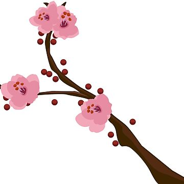 Delicate Branch of a Cherry Tree - Blossom by ibadishi