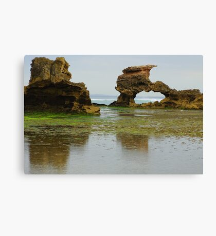 Sierra Nevada Rocks Canvas Print