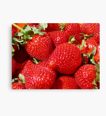 Pick of the crop Canvas Print