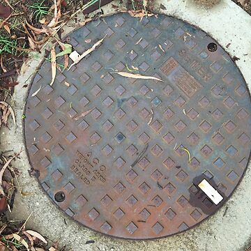 ACO Sewer Manhole Cover by redwolfoz