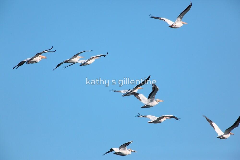 In Flight by kathy s gillentine