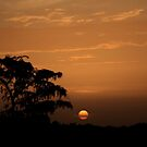 when the sun comes up by kathy s gillentine