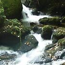 Water 2 by WhiteDiamond