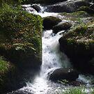 Water 6 by WhiteDiamond