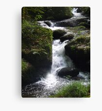 Water 6 Canvas Print