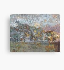 Country Trees Canvas Print