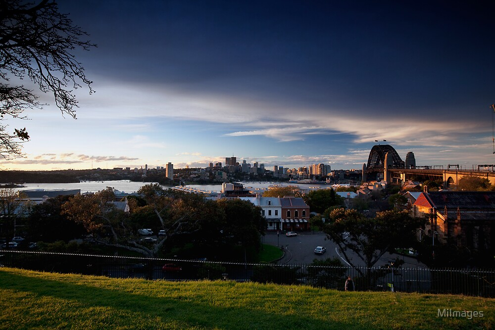 Observatory Park Sydney NSW Australia by MiImages
