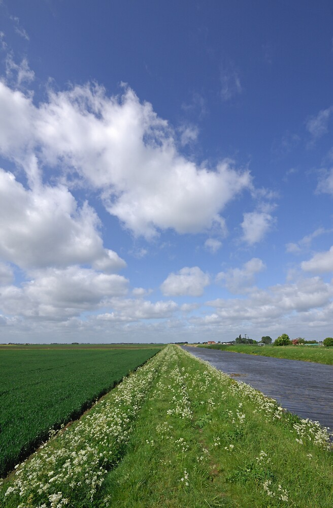Fenland, Cambridgeshire, UK by Dennis Smith