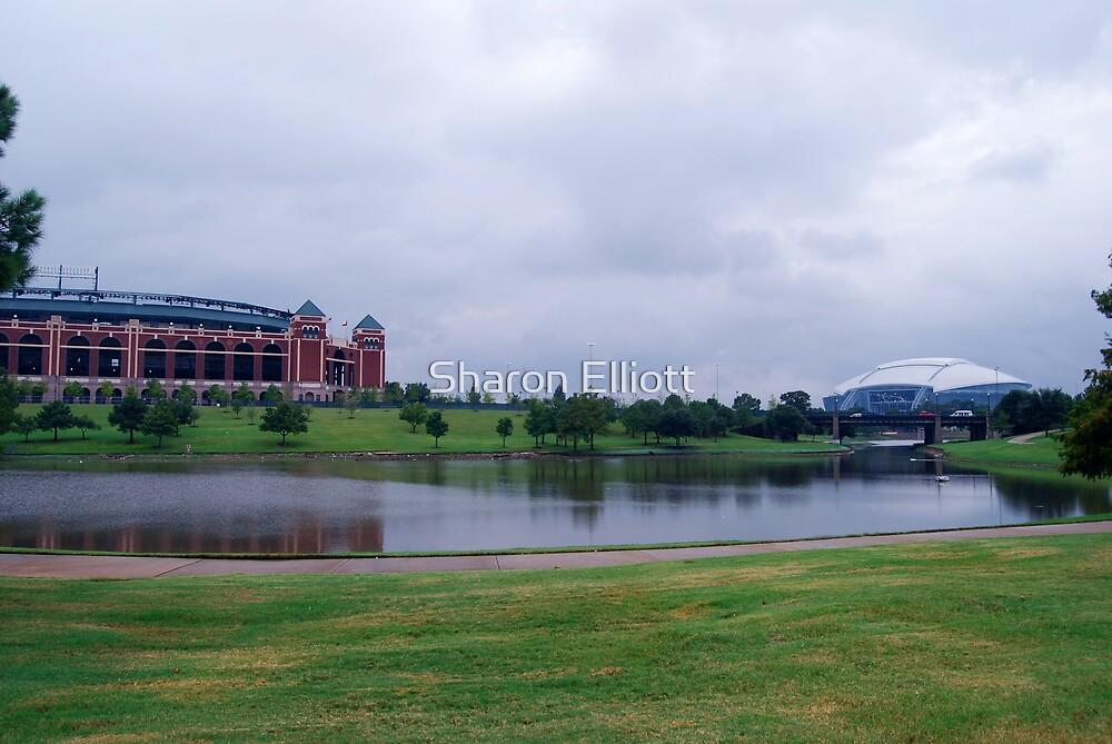 Playgrounds of Arlington, TX by Sharon Elliott