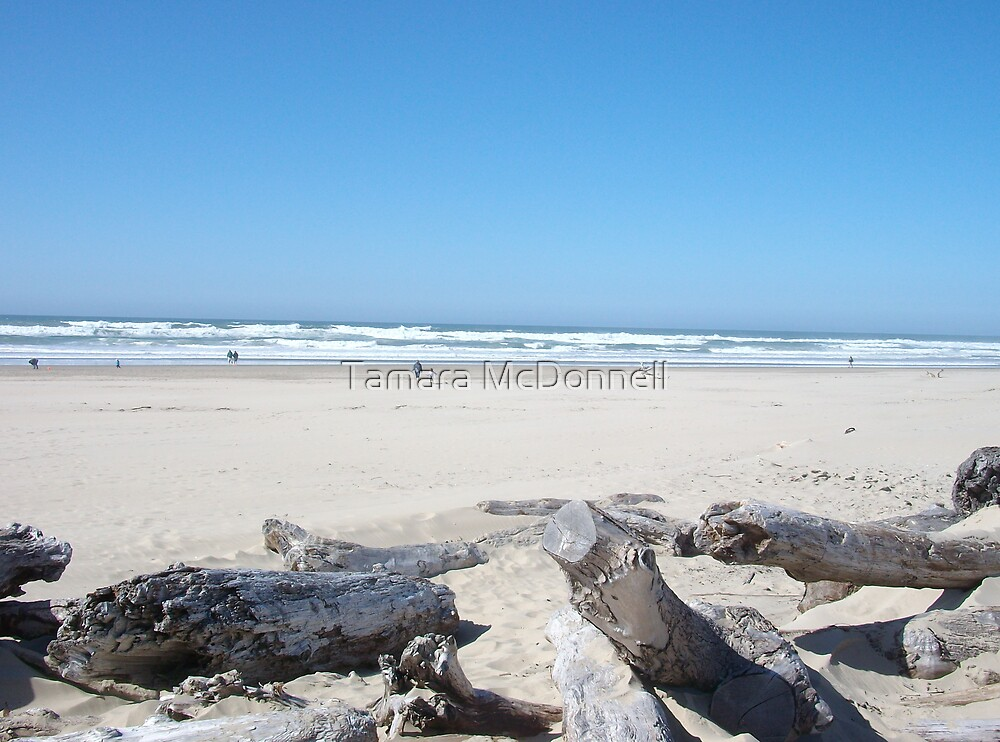 Beaches of Florence, Oregon by Tamara Lindsey