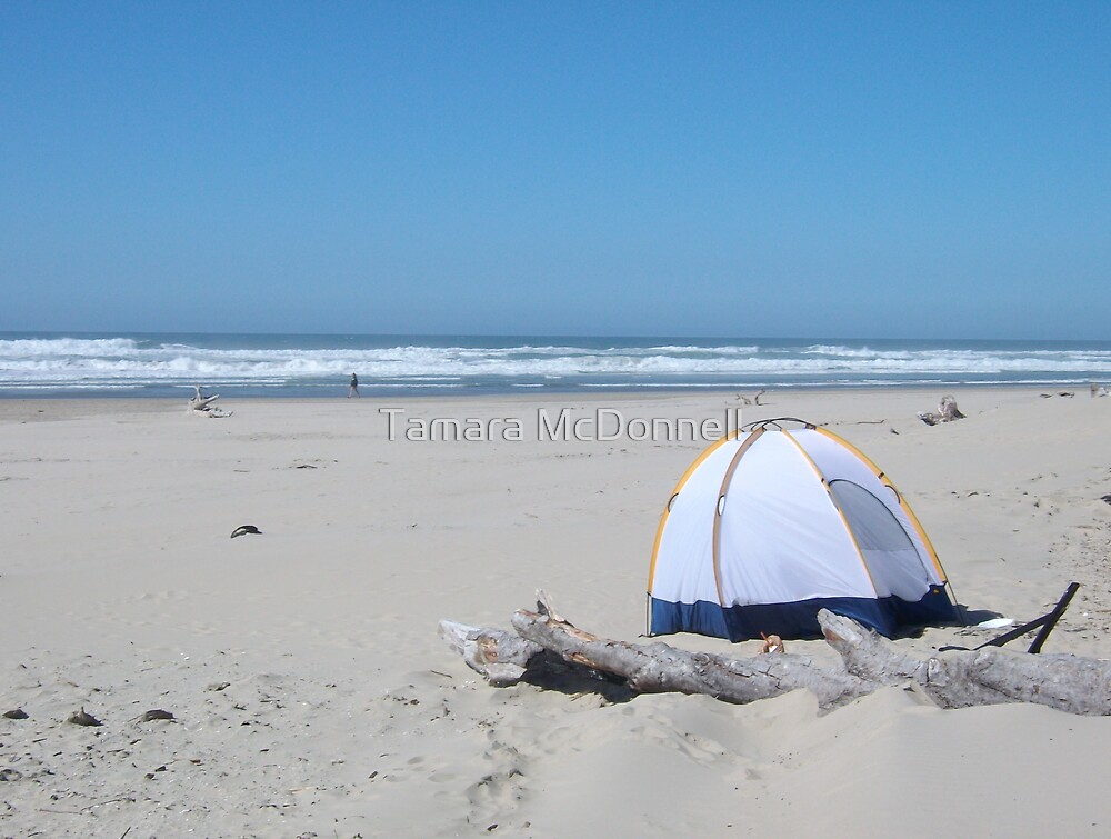 Camping on the Beach Florence, Oregon by Tamara Lindsey