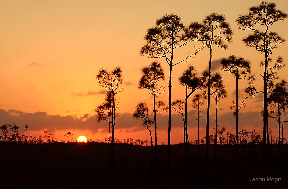 Everglades National Park Sunset by Jason Pepe