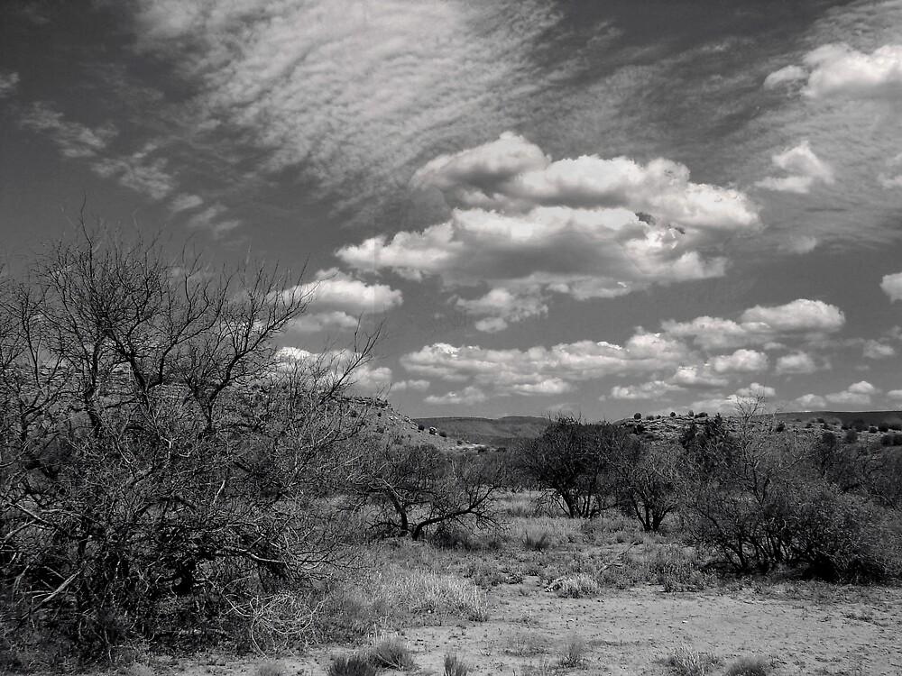 Big Sky Arizona by lucin
