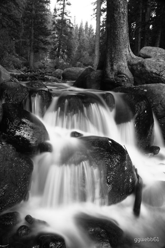 Chicago Creek in Black & White by ggwebb61