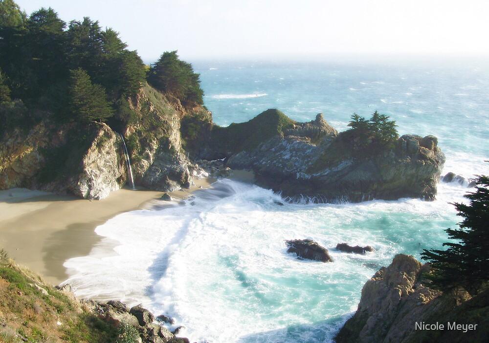 CA Coast by Nicole Meyer