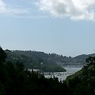 Kingswear by Bramble