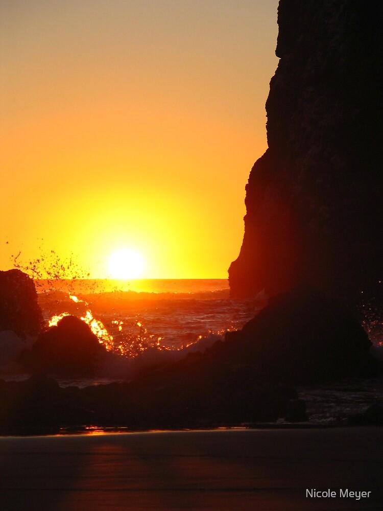 Sunset by Nicole Meyer