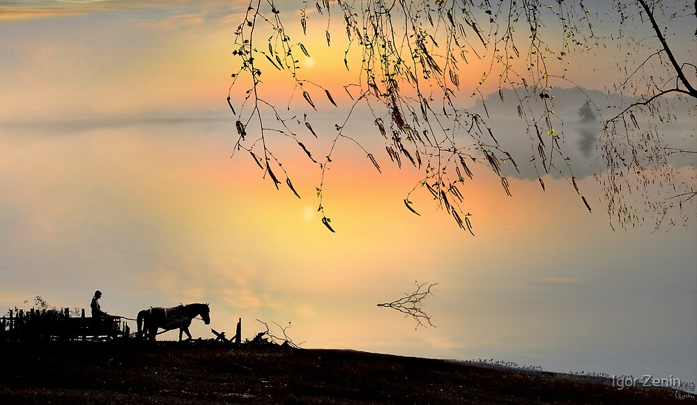 Country Silhouettes by Igor Zenin