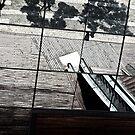 Abstract Escalator by Lozzle