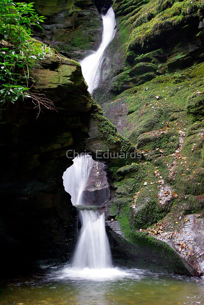 St. Nectans Glen Waterfall by Chris Edwards