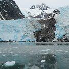 Blue Ice ~ Alaska by Barbara Burkhardt