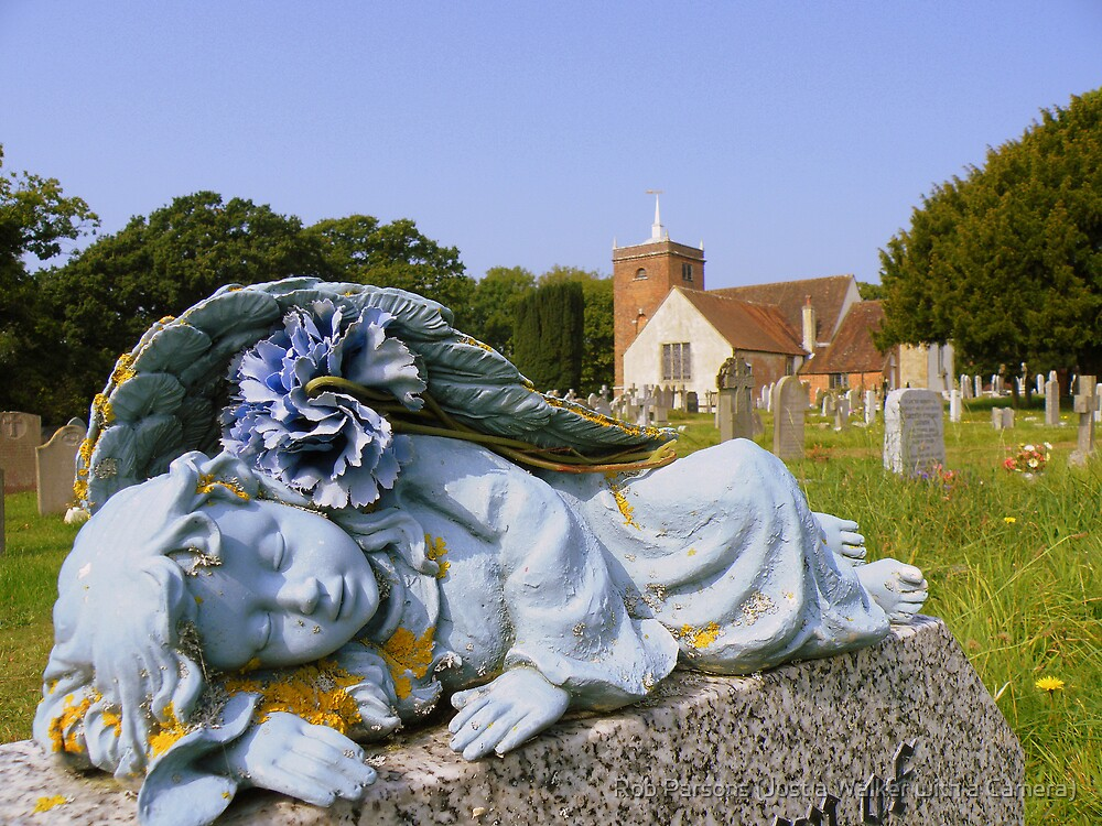 The New Forest: Sleeping Angel by Rob Parsons (AKA Just a Walker with a Camera)