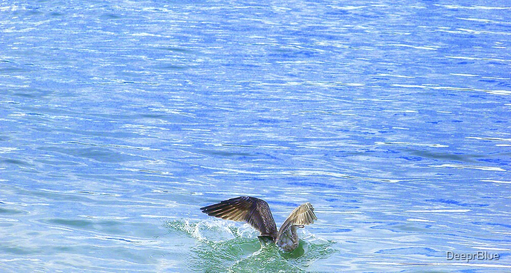 Blue Landing by DeeprBlue
