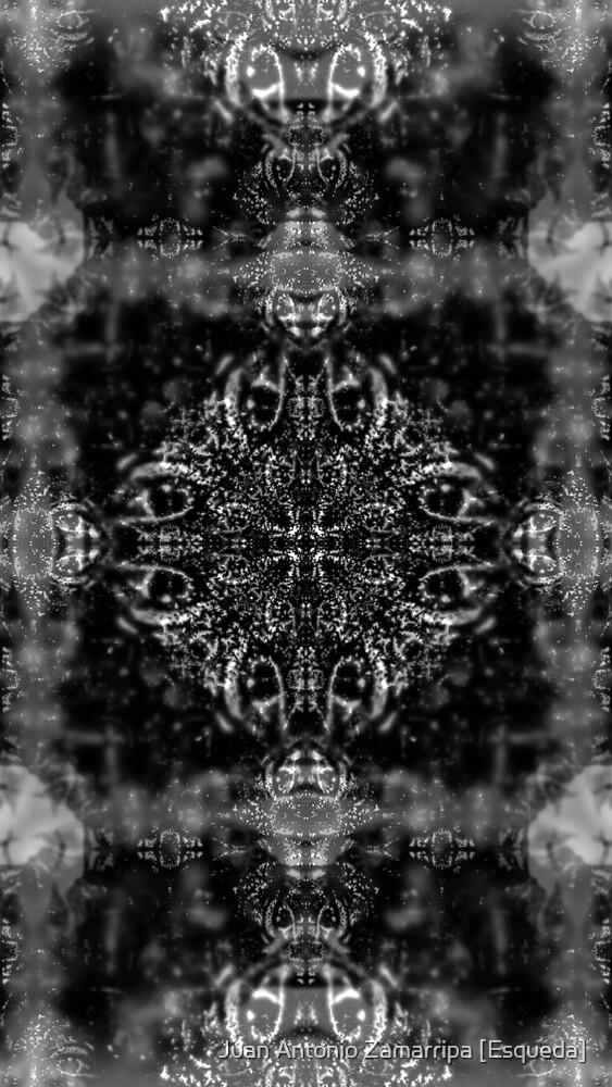 [P1270528 _GIMP _XnView] by Juan Antonio Zamarripa [Esqueda]