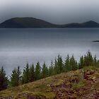 Þingvellir National Park 2 by PetersPicks