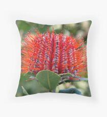 Banksia coccinea Throw Pillow