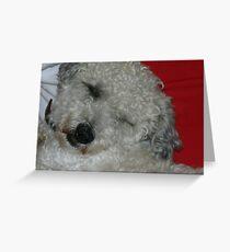 sleepy head Greeting Card