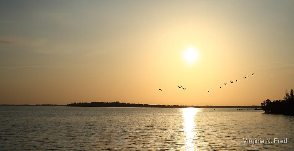 Golden Sunrise by Virginia N. Fred