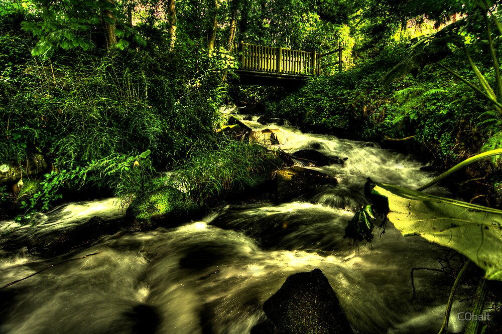The Welsh Mountain Stream by C0balt