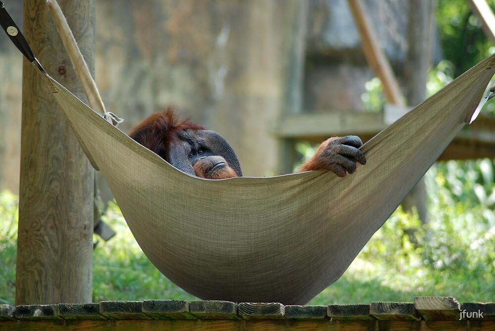 Lazy Summer Days by jfunk