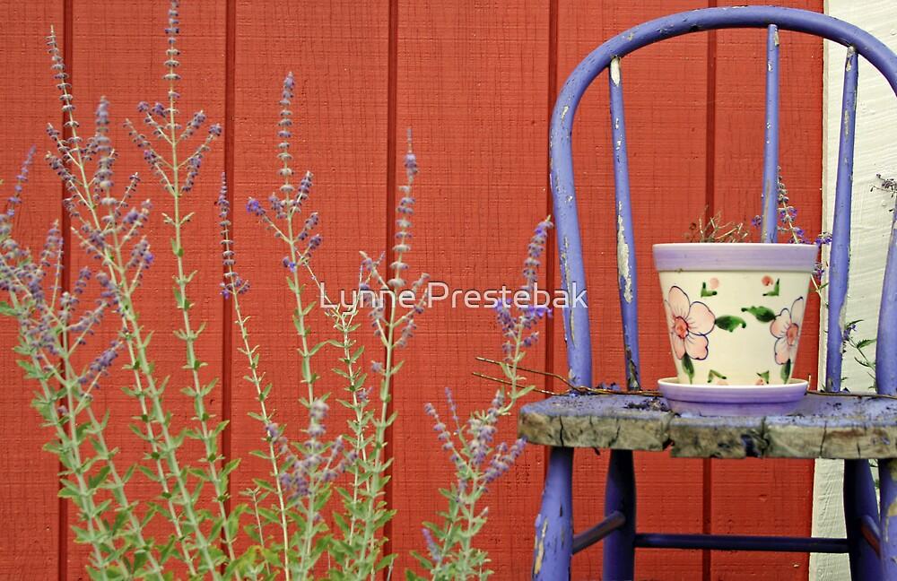chair by Lynne Prestebak