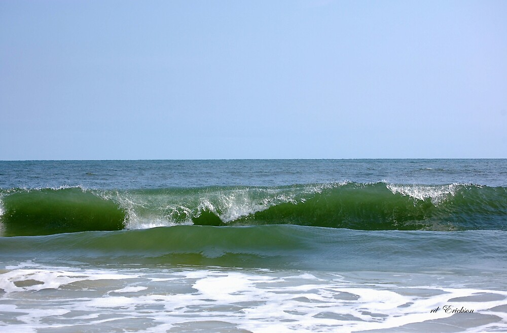 Emerald Crested Wave by rd Erickson