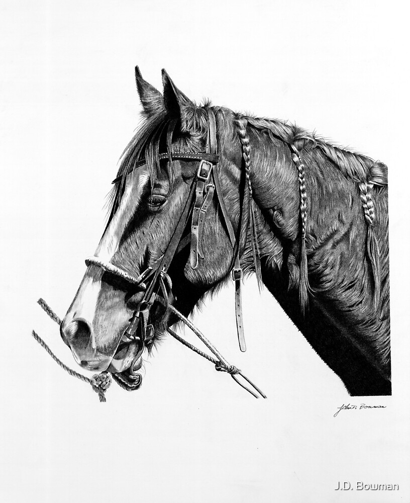 Rodeo Horse by J.D. Bowman